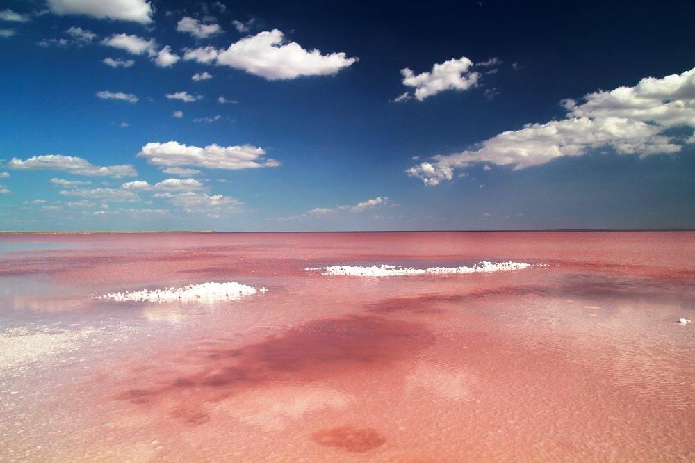 Україна вражає_ Розовое озеро