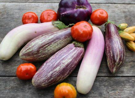 Овощ, который помогает похудеть: Юлия Панкова – о полезных свойствах баклажана