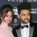 Главные слухи Голливуда: Колин Фаррелл спит с сестрой, The Weeknd пытался изнасиловать Селену Гомес