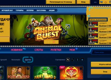 Казино Vulkan – азартные игры и бонусные предложения